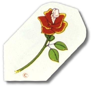 Dart Fly METRO, Motiv Rose
