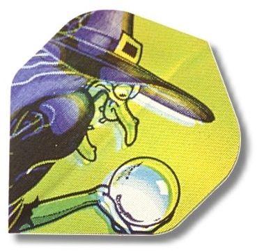 "High-Tech Flys 2D Hologram, Motiv ""Hexe"""