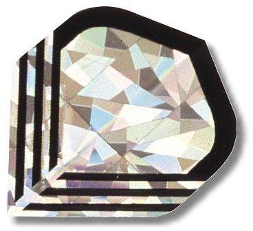 """High-Tech Flys 2D Hologram, Motiv """"Silber-Schwarz"""""""